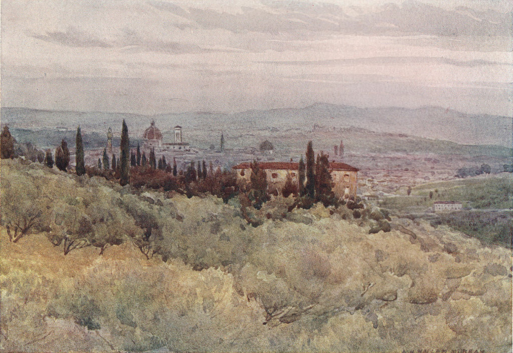 Florence from the olive gardens of San Domenico by Alexander Murray. Italy 1904