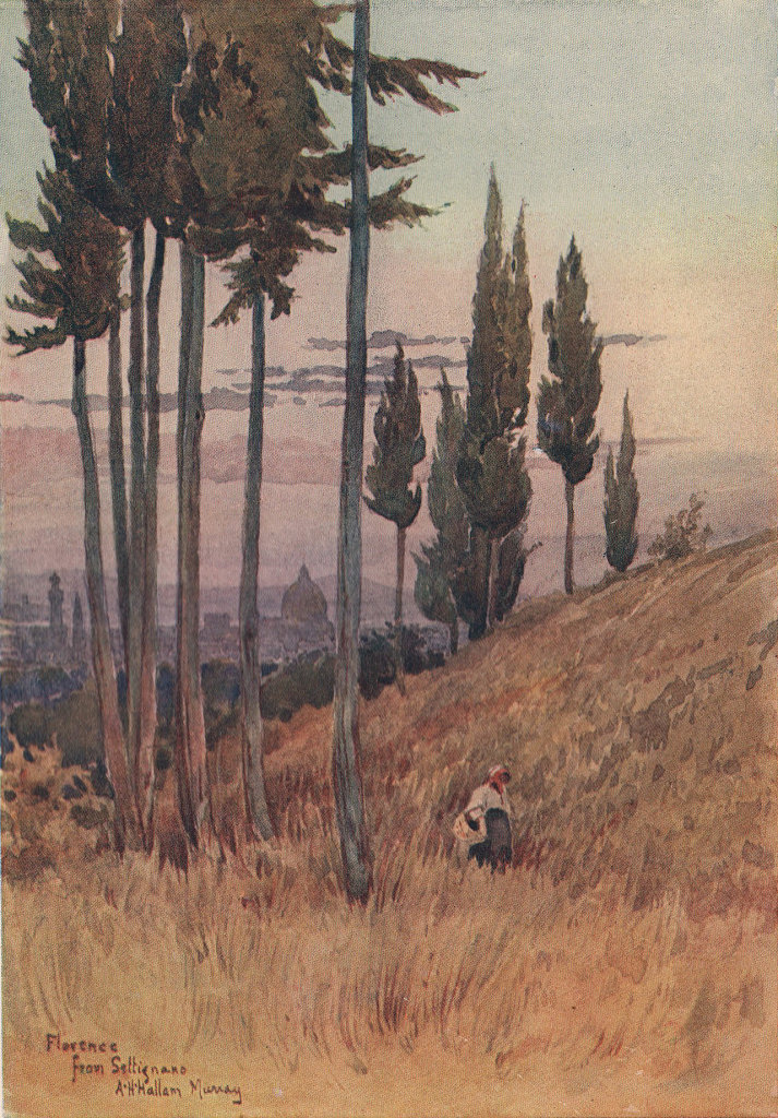 Florence from Poggio Gherardo by Alexander Murray. Italy 1904 old print