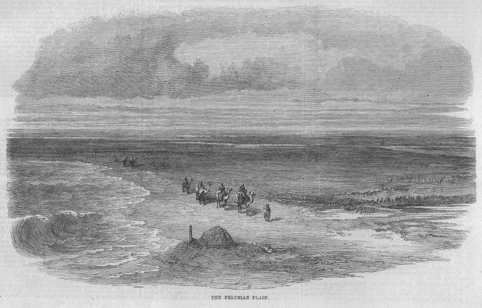 Associate Product EGYPT. Suez Canal. The Pelusian Plain, antique print, 1869