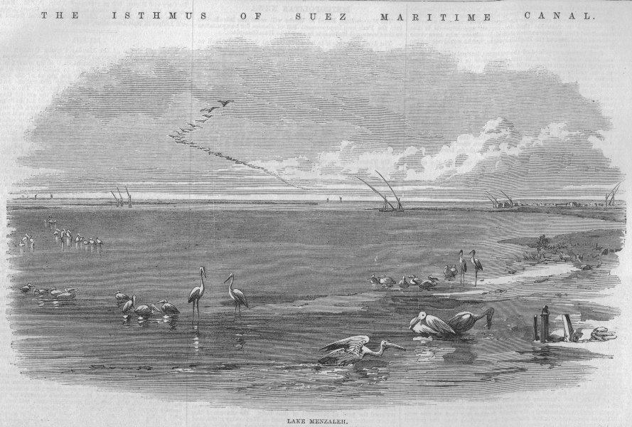 Associate Product EGYPT. Suez Canal. Lake Menzaleh, antique print, 1869