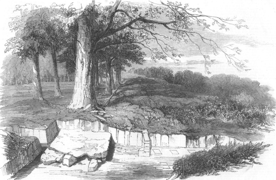 Associate Product SHROPSHIRE. Excavations on the site of a Roman Villa, Linley Hall, print, 1856