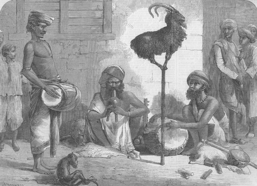Associate Product INDIA. Performing Goat, antique print, 1864
