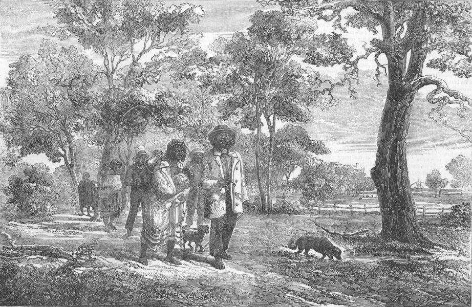 Associate Product AUSTRALIA. Aborigines of Victoria, antique print, 1856