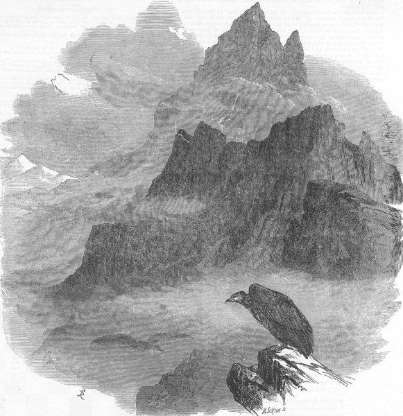 Associate Product FRANCE. Summit of Pic du Midi D'Osseau, Pyrenees, antique print, 1854