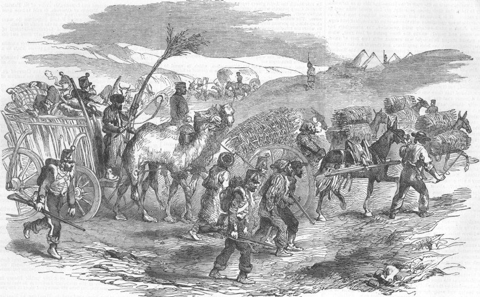 Associate Product UKRAINE. Sevastopol road-Wagons carrying Fascines, antique print, 1854