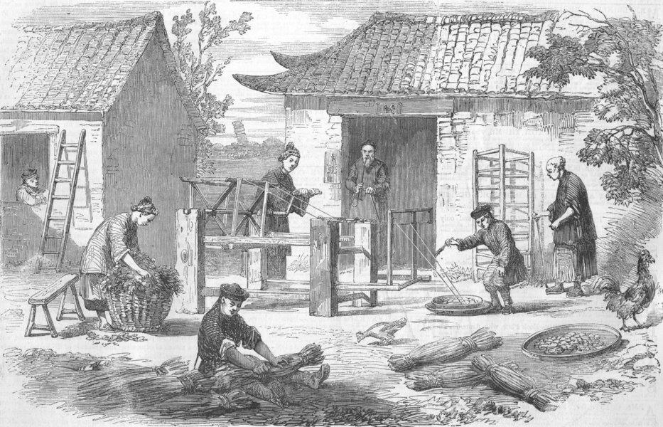 Associate Product CHINA. Silk Culture In China. Preparing Raw Silk, antique print, 1857