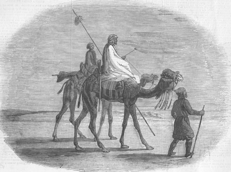 Associate Product EGYPT. Mid-Day Encounter in the Desert, antique print, 1857