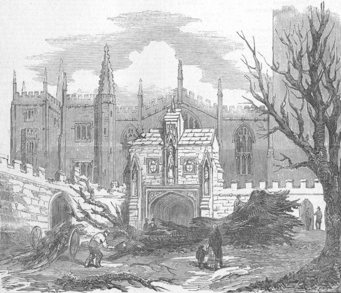 Associate Product OXON. Elm felled, Hurricane, Magdalen College, Oxford, antique print, 1853