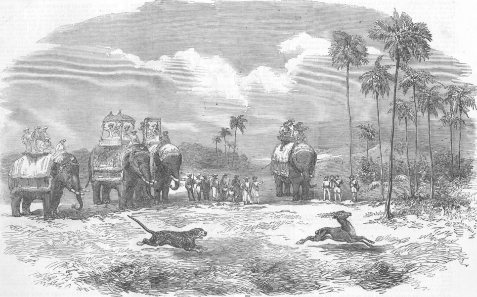 Associate Product INDIA. Antelope-Hunting with the Leopard, antique print, 1857