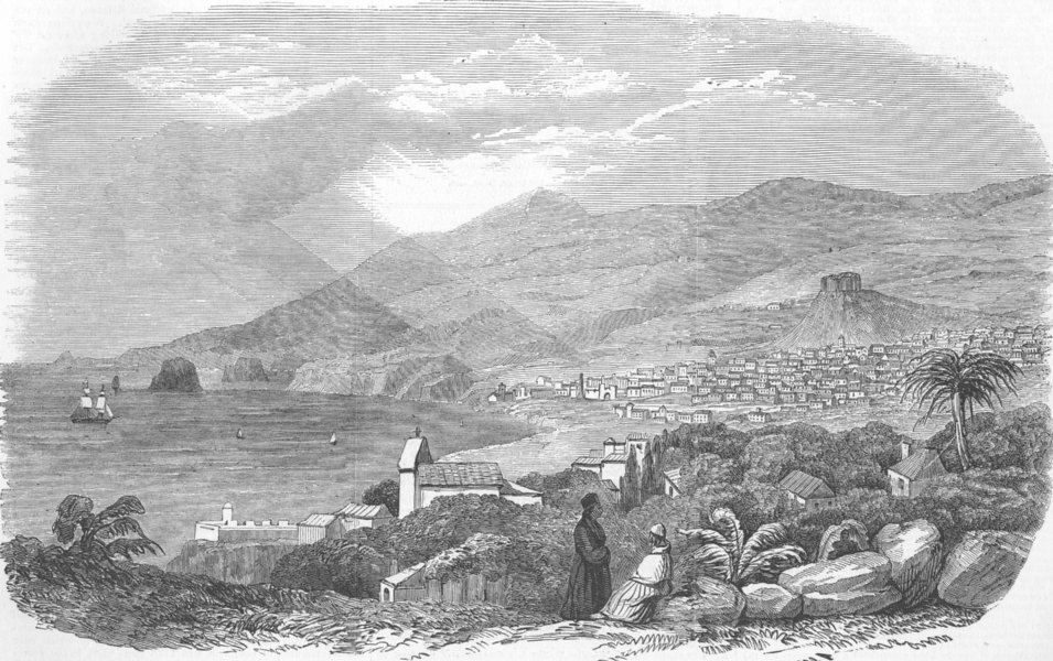 Associate Product PORTUGAL. Funchal, Madeira, from the East Cliff, antique print, 1853