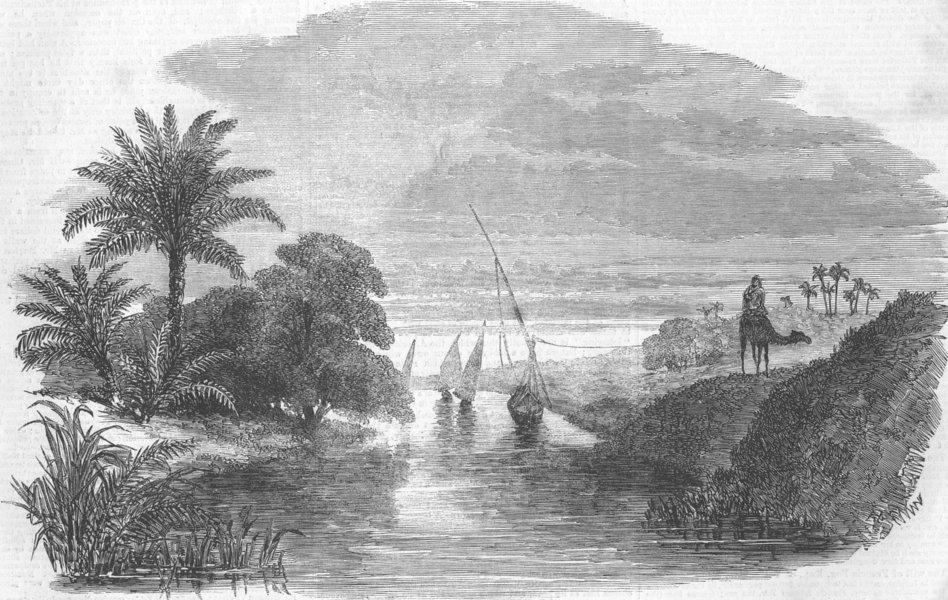 Associate Product EGYPT. Scene, Sweet-Water Canal, nr Tel-El-Kibeer, antique print, 1863