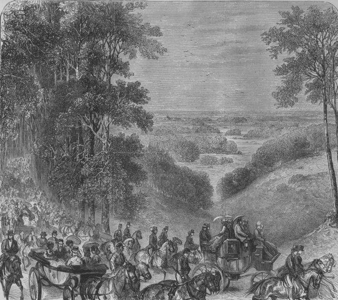 Associate Product SUSSEX. Goodwood Races, Beech Avenue. Chicester, antique print, 1871
