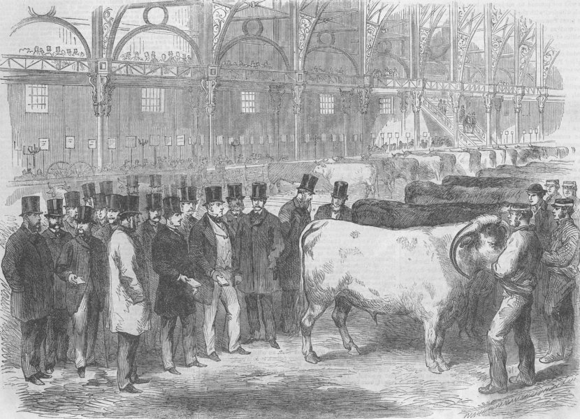 Associate Product LONDON. Prince of Wales, Smithfield Club Cattle Show, antique print, 1863