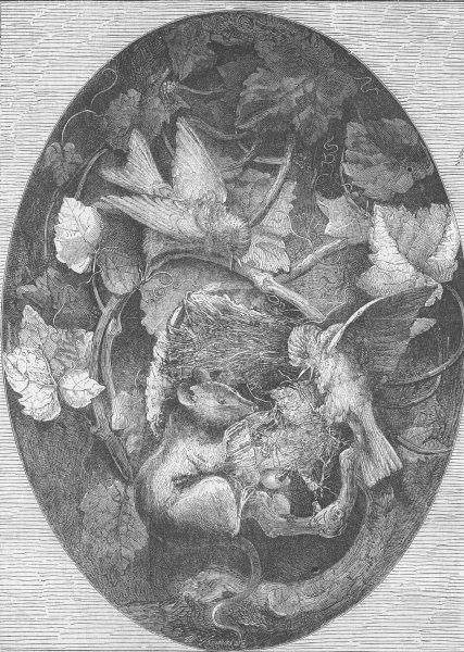 Associate Product MICE. Linnets defending their nest against dormouse, antique print, 1862