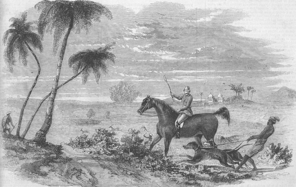 Associate Product INDIA. Antelope hunting. Antelopes driven from cover, antique print, 1858