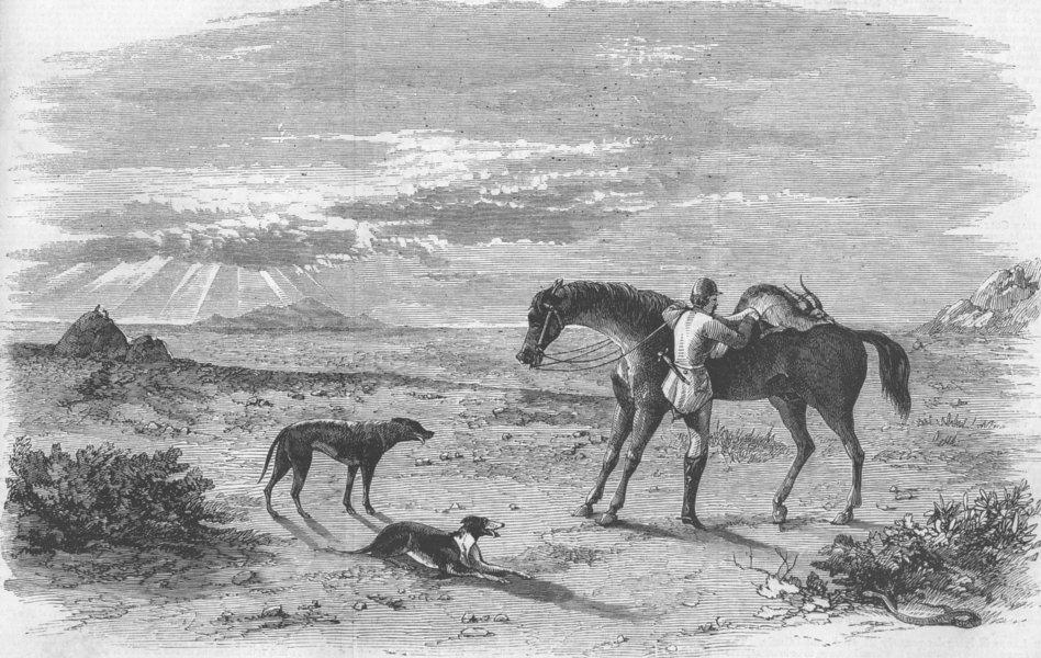 Associate Product INDIA. Antelope hunting. Preparing to return, antique print, 1858