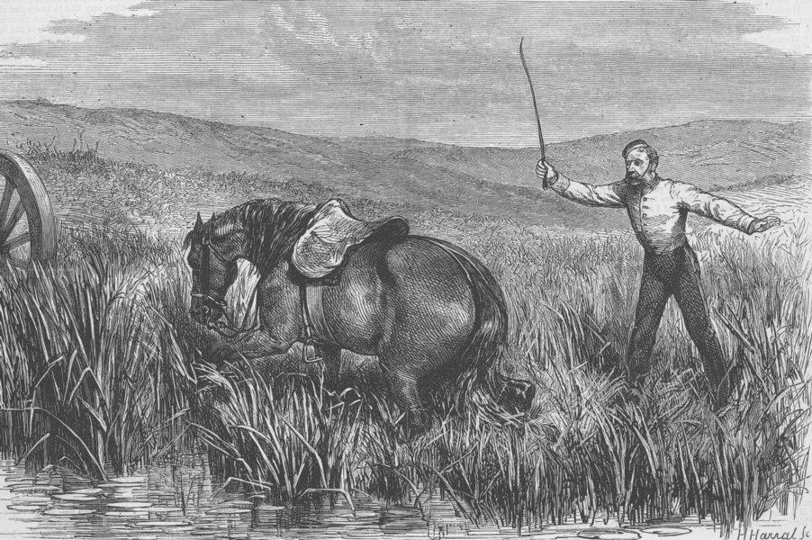 Associate Product DEVON. Trooper's horse, Fox Tor Mires, antique print, 1873