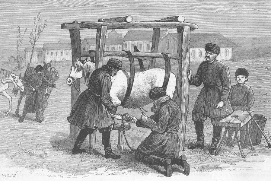 Associate Product RUSSIA. Shoeing Horses, camp, Kischineff, antique print, 1877