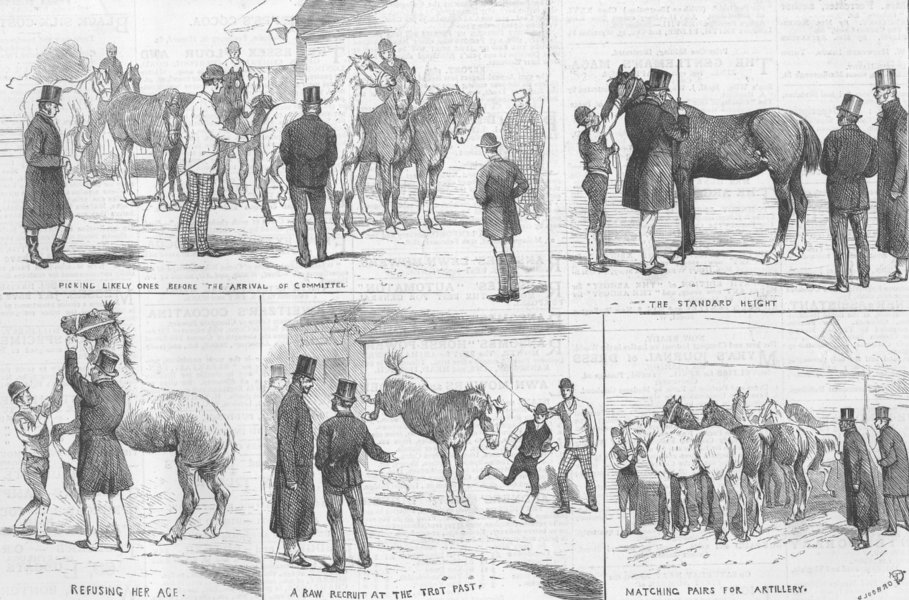 Associate Product LONDON. Purchasing army horses, Redhill, Edgware, antique print, 1878