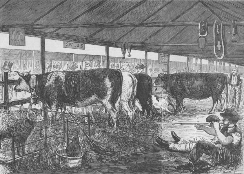 Associate Product LONDON. Farm show, Battersea Park-Swiss Cattle Shed, antique print, 1862