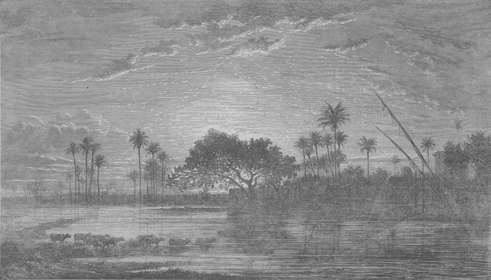 Associate Product EGYPT. Sunset of the Banks of Nile, antique print, 1859