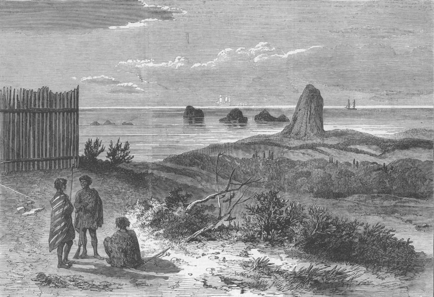 Associate Product NEW ZEALAND. Sugar-loaf Islands, from Waireka Hill, antique print, 1863