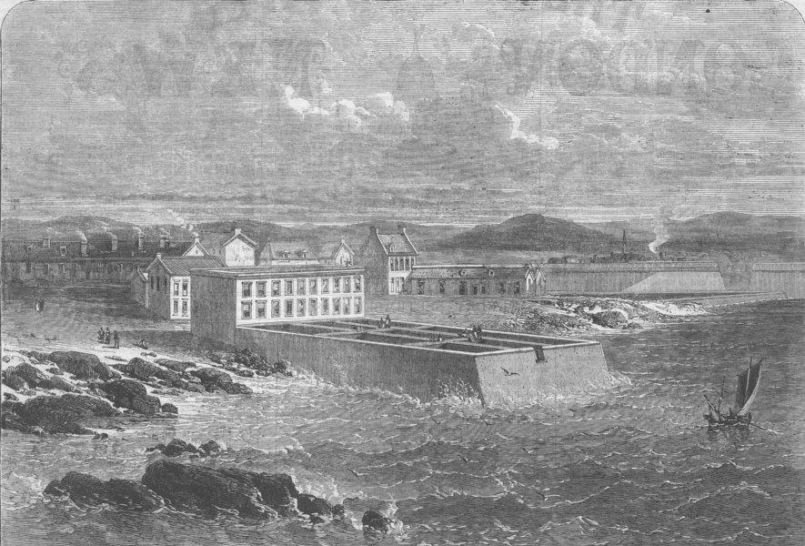 Associate Product BRITTANY. Fish Lab, Concarneau, Cape Finisterre, antique print, 1866