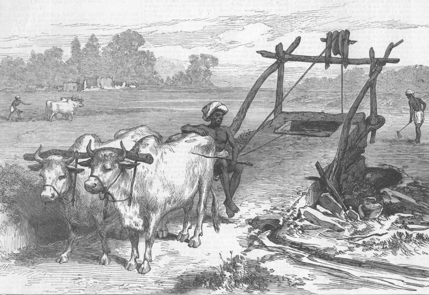 Associate Product INDIA. Famine, Bengal. Indian mode of irrigation, antique print, 1874