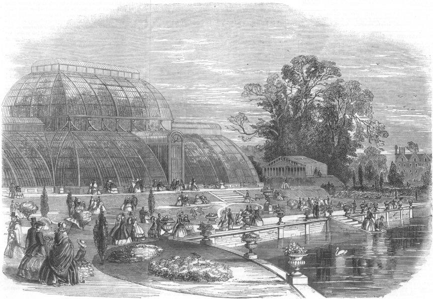 Associate Product The Palmhouse, Kew Gardens, London, antique print, 1859