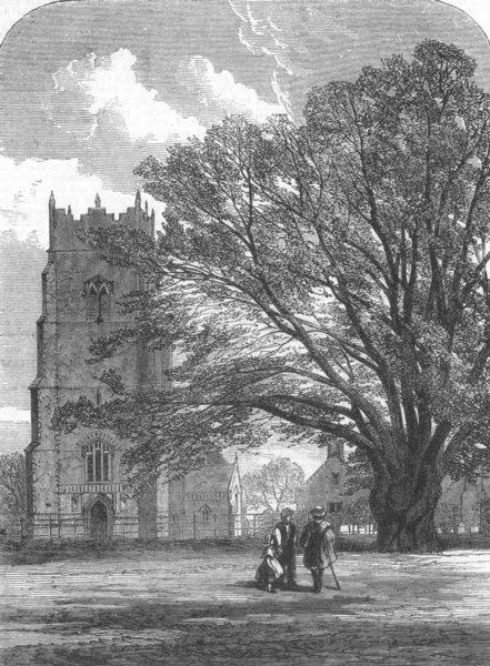 Associate Product SUFFOLK. Helmingham Church, Suffolk, antique print, 1864