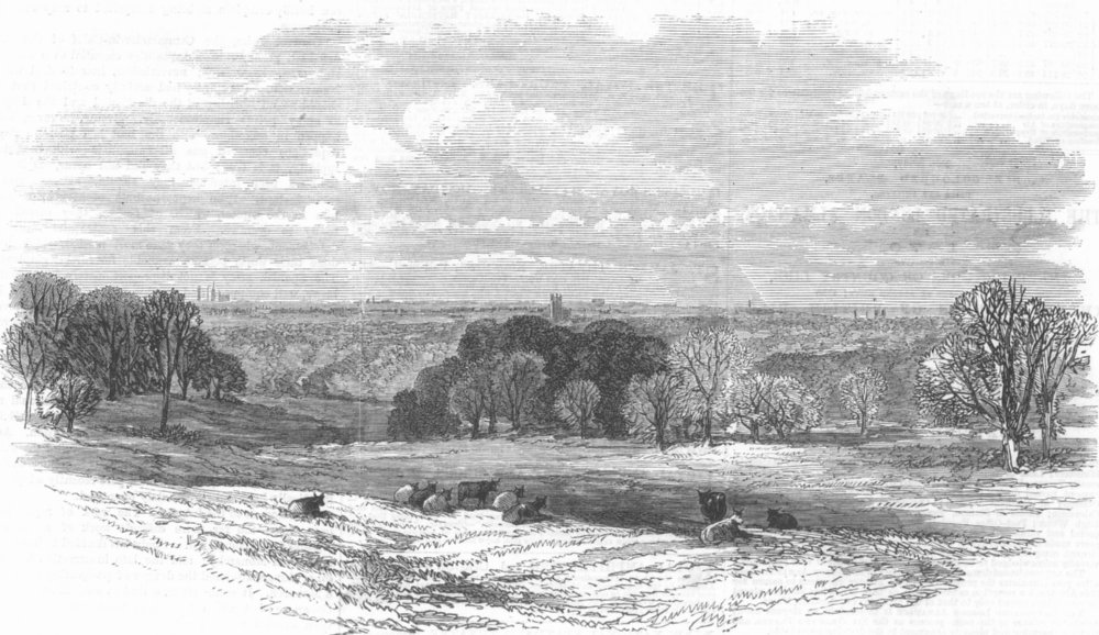 Associate Product LANCS. View, Knowsley Park, looking towards Liverpool, antique print, 1869