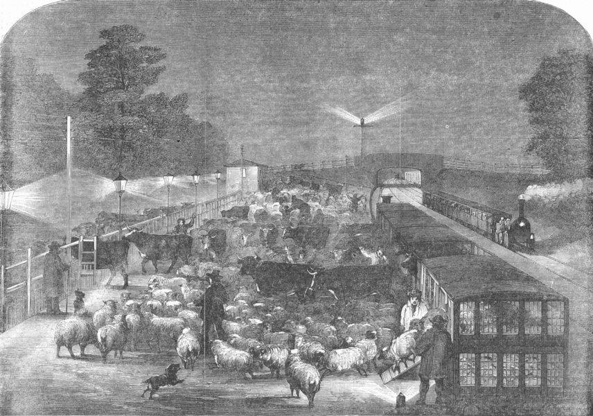 Associate Product LONDON. Christmas cattle, Tottenham Station, antique print, 1855