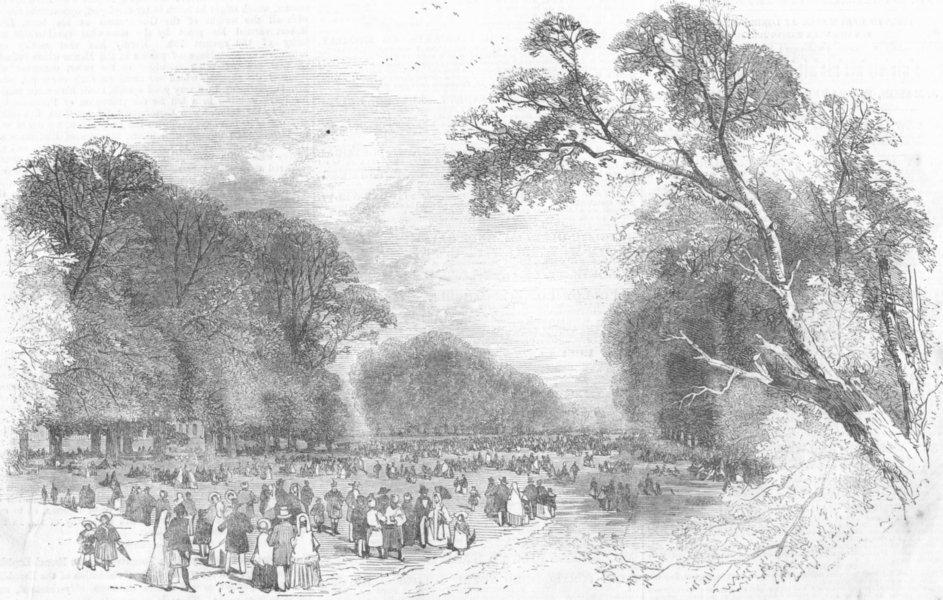 Associate Product LONDON. Kensington Gdns-broad walk, antique print, 1851