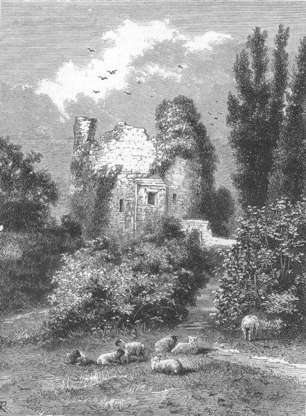 Associate Product WALES. castle ruins, Hawarden Park, antique print, 1880