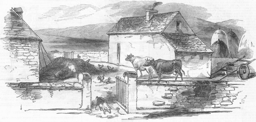 Associate Product IRELAND. Rynard, antique print, 1846