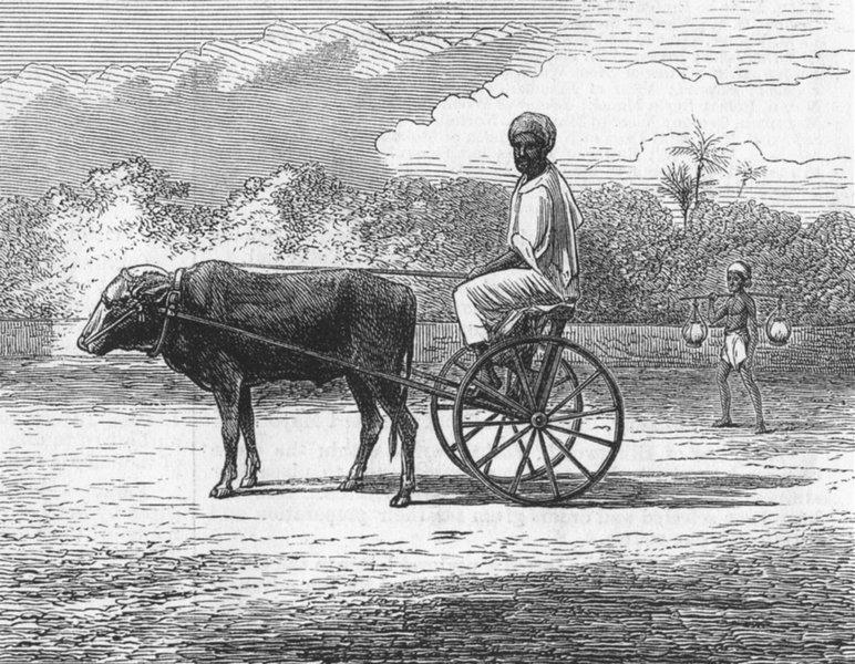 Associate Product INDIA. Ramasawmy going to Bazaar, Chennai, antique print, 1876