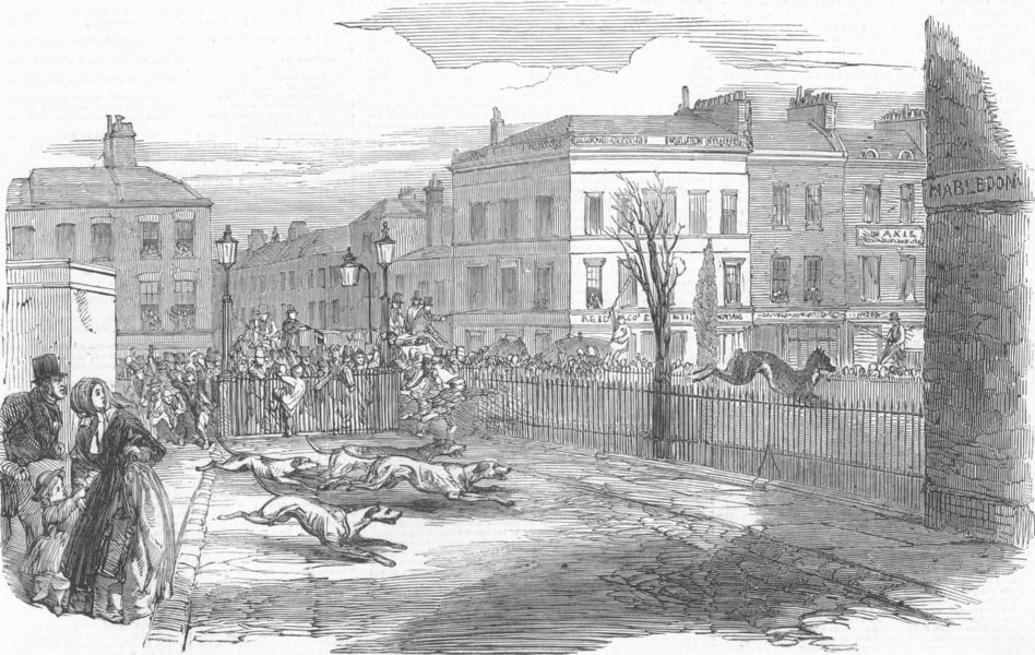 LONDON. Stag hunt, new Rd , antique print, 1850
