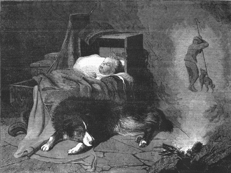 Associate Product BABIES. Dream of Shepherd's dog, antique print, 1855