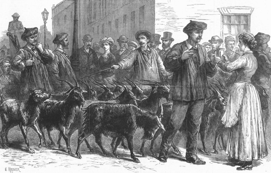 Associate Product LONDON. Pyrenean goats. Selling milk, antique print, 1882