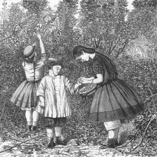 Associate Product CHILDREN. Gathering blackberries. Extracting thorn, antique print, 1863