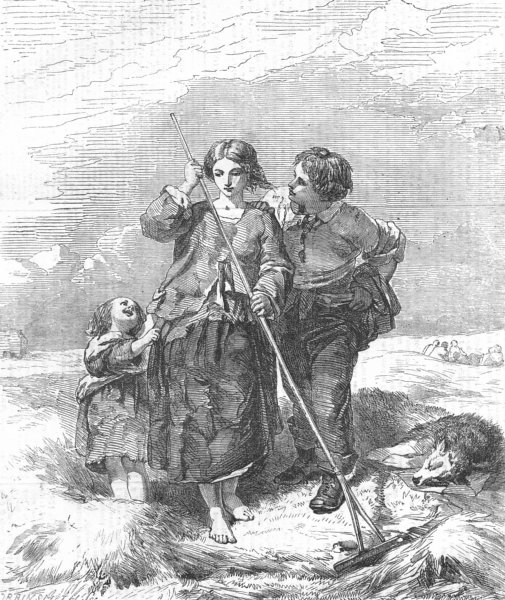 Associate Product CHILDREN. The Hay-field, antique print, 1856