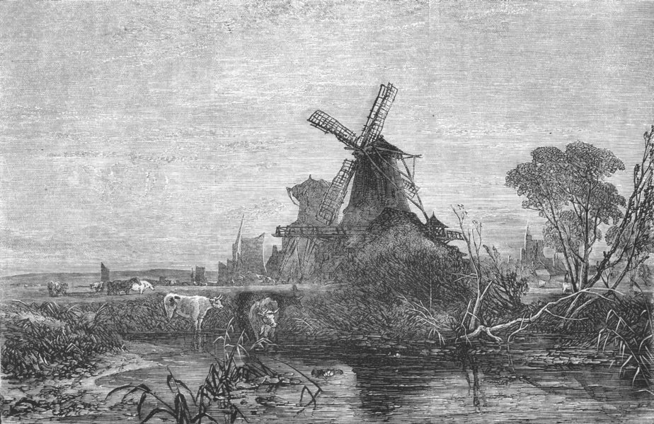Associate Product WINDMILLS. In the Marshes-morning, antique print, 1856