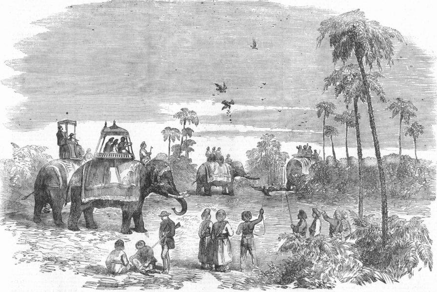Associate Product INDIA. Partridge-hawking in India, antique print, 1857