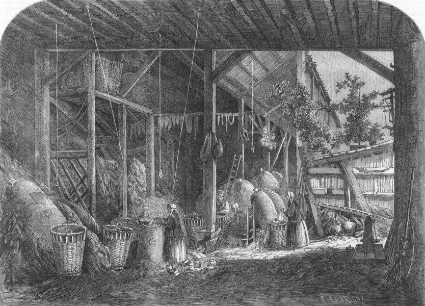 Associate Product FRANCE. Rag-warehouse, quartier mouffetard, Paris, antique print, 1861