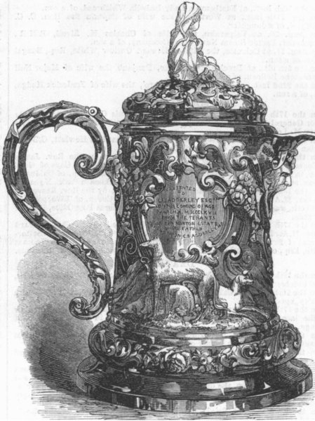 Associate Product DECORATIVE. Jug. C Adderley, antique print, 1867