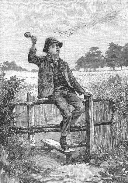Associate Product PORTRAITS. Corydon, antique print, 1886