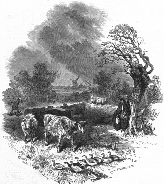 Associate Product WINDMILLS. Rain Cows Geese Shelter, antique print, 1847