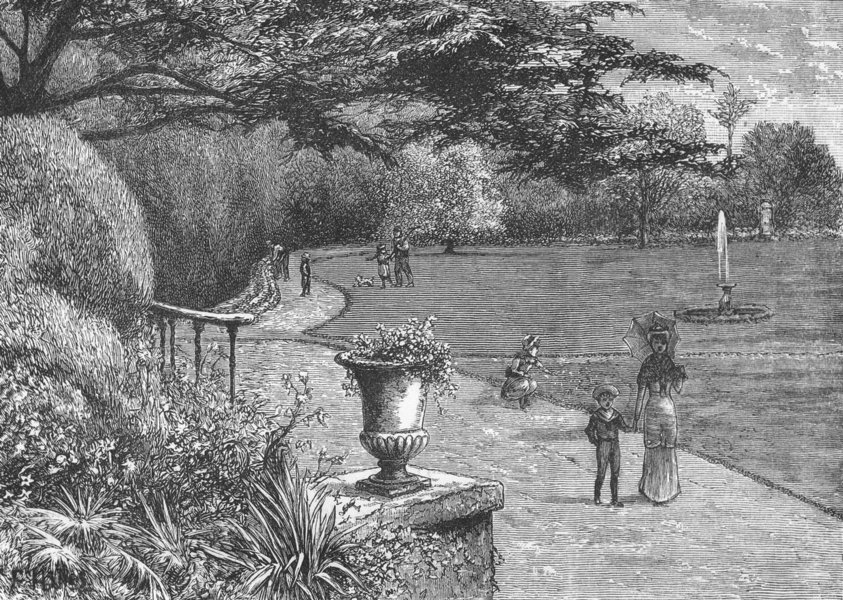 Associate Product TWICKENHAM . The Gardens of Orleans House, 1882 1888 old antique print picture