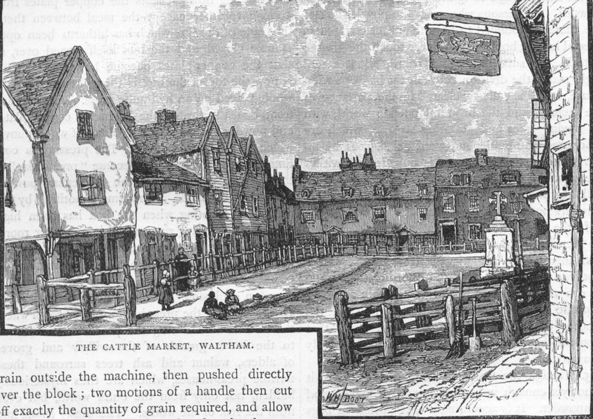 Associate Product WALTHAM. The Cattle Market, Waltham. Middlesex 1888 old antique print picture