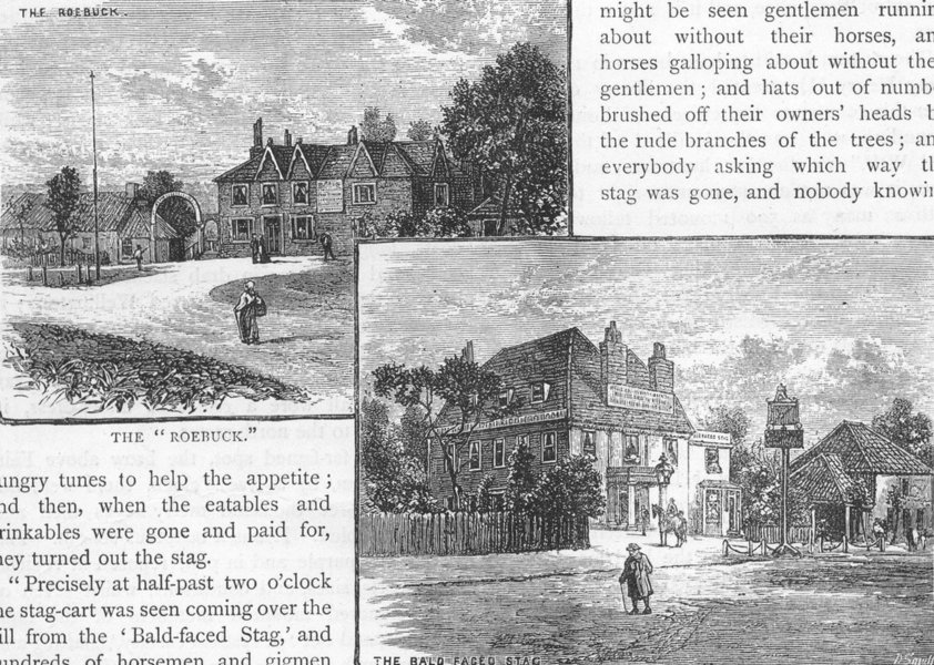 Associate Product EPPING FOREST. Roebuck; Bald-faced Stag pubs. Essex 1888 old antique print